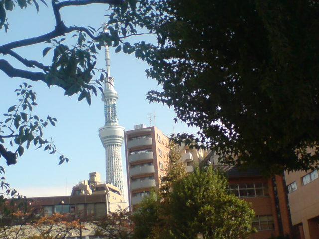 201111.jpg